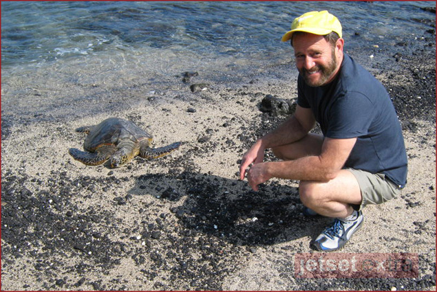 The sea turtles are friendly