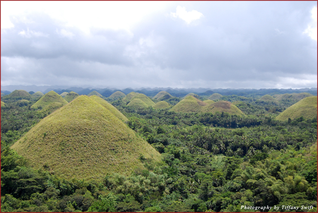 Bohol's Chocolate Hills, green from the fall rain