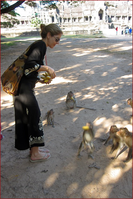 Feeding some monkeys