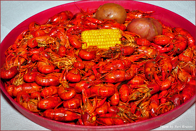 Boiled crawfish at Steamboat Bill's
