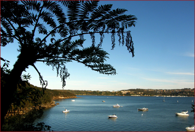 The Manly to Spit Scenic Walkway showcases the variety of Sydney Harbour, from the tranquil to the dramatic