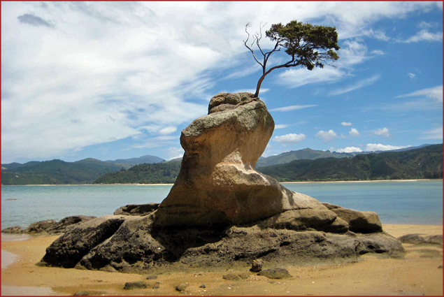 Coast of Abel Tasman National Park