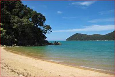 Kiwi beach