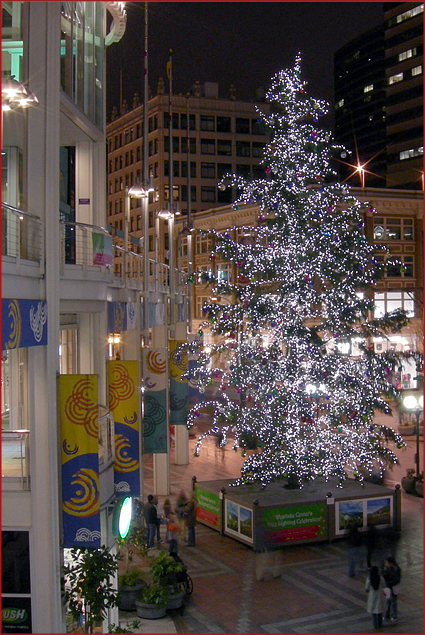 Outdoor Christmas tree at the Westlake Mall in Seattle, Washington