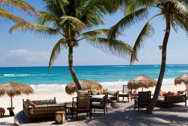Dining Room with a View: Nestled right on the beach, La Zebra embodies all that is paradise