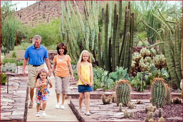 Family exploring the flora at Desert Botanical Garden