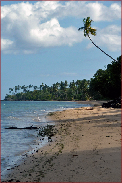 A tranquil beach on Treasure Island in Fiji