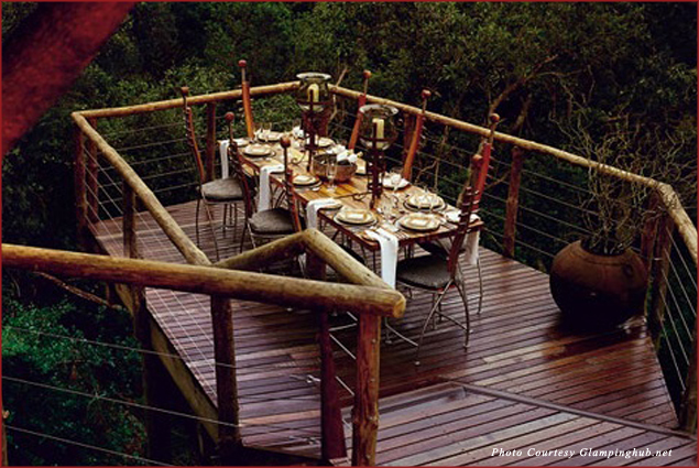 Dining amidst the trees at the Tsala Treetop Lodge in South Africa