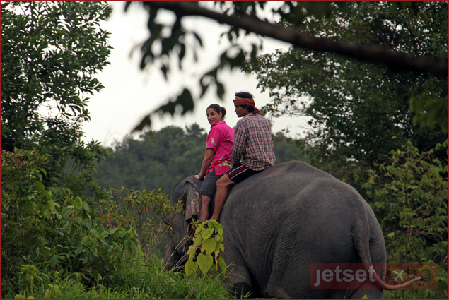 Mary Anne Been riding through the jungle bareback with her Mahout and elephant
