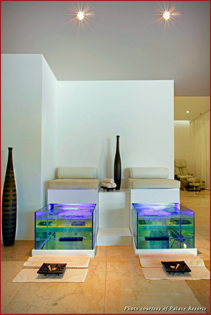 The Fish Spa treatment offered at Le Blanc Spa Resort in Cancun is the first of its kind in the world