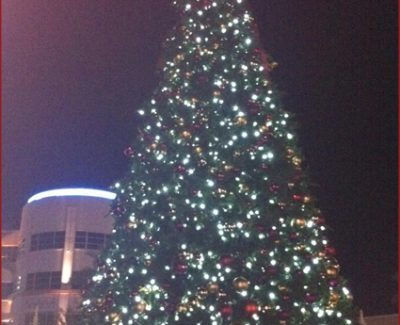 Westgate Entertainment District's 33-foot tree has over 3,000 lights
