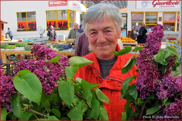 Lilacs were featured in the markets