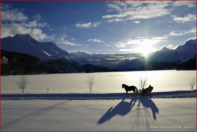 A horse-drawn carriage in the snow-covered countryside of Sils in the evening sun