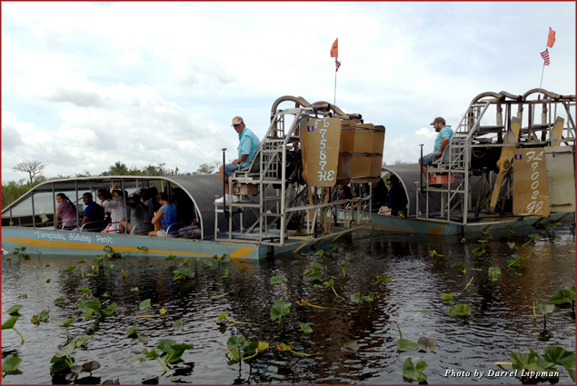 """Two airboats participate in """"Airboat Wars,"""" spinning in circles to spray each other's passengers"""