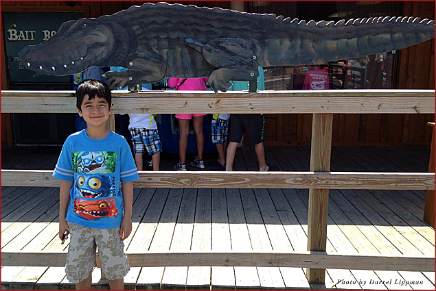 My son Troy poses next to an alligator cutout