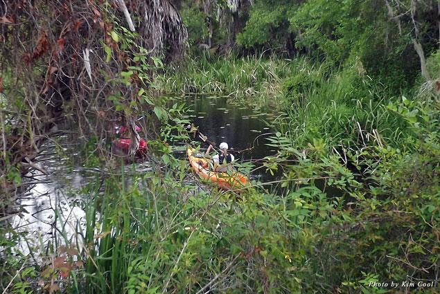 Amazing scenery on Shell Creek River