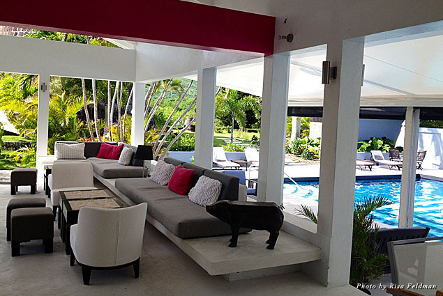 Montpelier Hotel pool