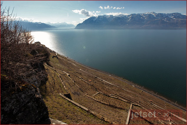View of the Lavaux wine region