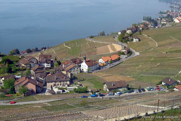 Vineyards of the Lavaux