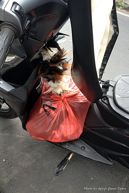 A bag of souvenirs from the market are secured on the scooter