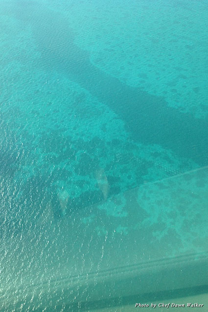 The water in Belize is crystal clear