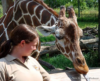 Visitors to the Indianapolis Zoo can get up close to the animals