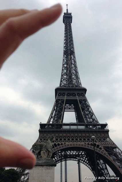 The Eiffel Tower from a distance