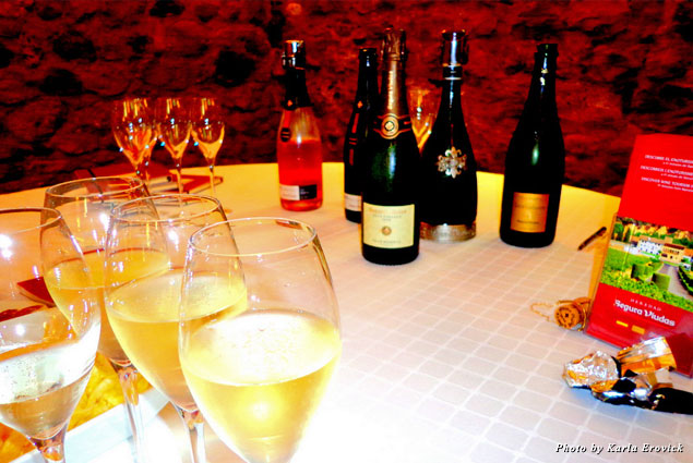 An array of cava