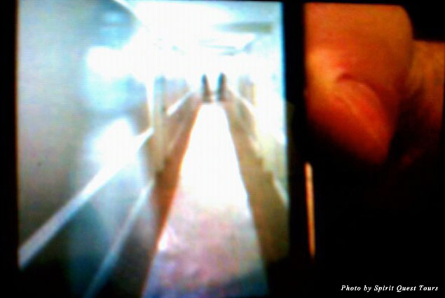 Could this be the image of a ghostly woman inadvertently captured on a camera phone?