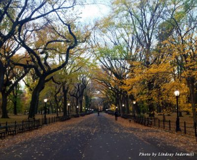 Autumn is the most beautiful time to visit New York—just ask any New Yorker
