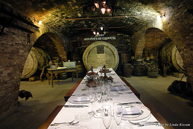 Food and wine tasting in the Gramona cellars