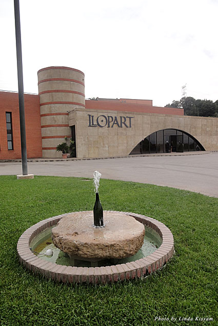The entrance to the Llopart winery