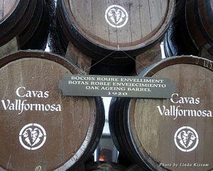 Wine barrels at Vallformosa