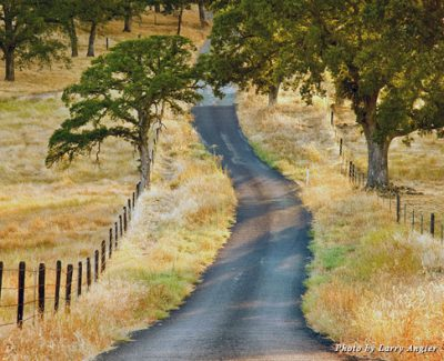 Amador Country Road