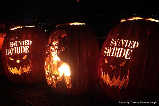 Haunted Hayride carved pumpkins
