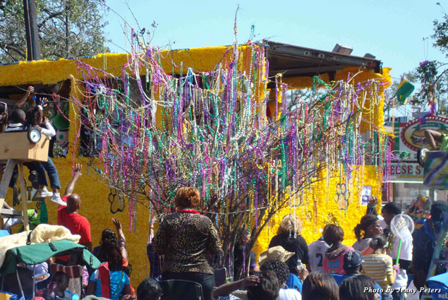 Trees catch beads along the parade route, too!