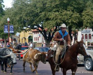 The twice-daily Fort Worth herd drive re-creates an important piece of the city's Old West heritage