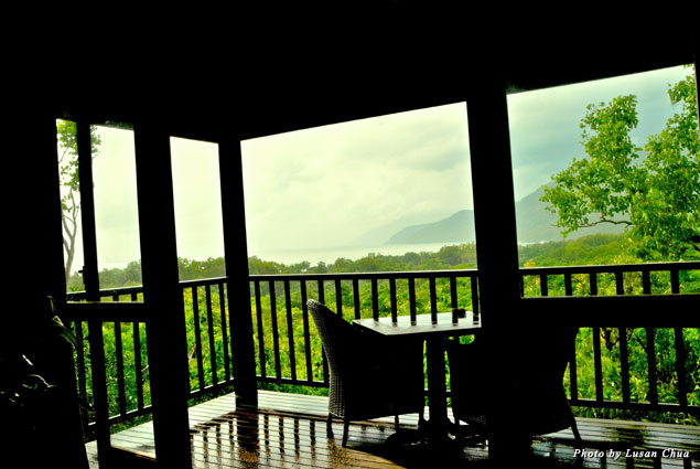 View from private luxury treetop bungalow at Thala Beach Lodge