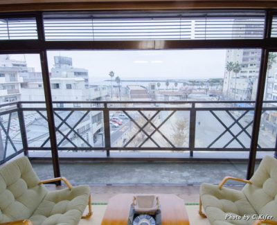 The view from our ryokan guestroom