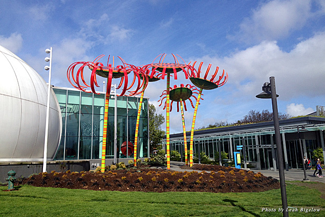 """""""Sonic Bloom"""" art display outside Seattle's Pacific Science Center"""