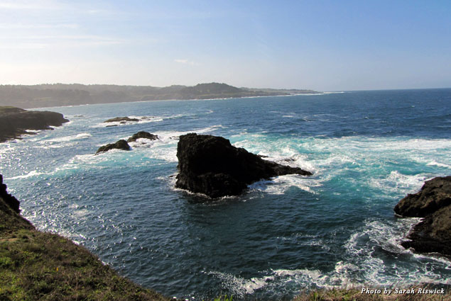View from the hiking trails at Mendocino Headlands State Park