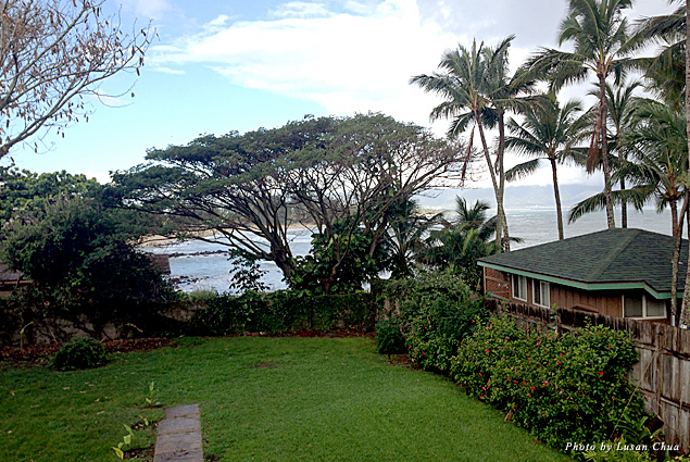 View from Paia Bay Suites veranda