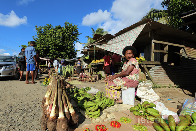 Visiting the Navua village, where we shopped for fresh fruit and vegetables