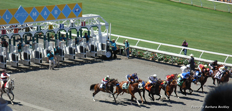 Thoroughbreds wowed the glamorous crowd of 42,000 on Opening Day at the Del Mar Racetrack