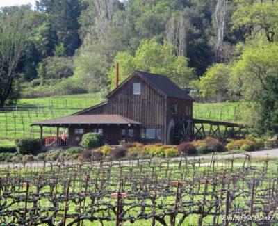 Visit Mill Creek Winery