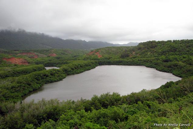 Legend has it the little people, the Menehune, built the Alekoko Menehune Fishpond pond in one night