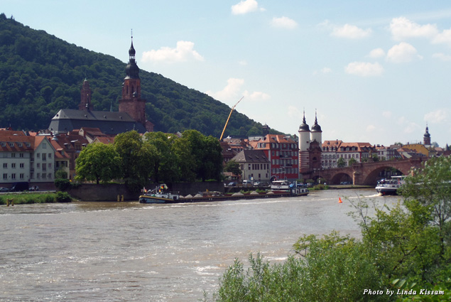 The Neckarsonne boat gently glides by scenic venues