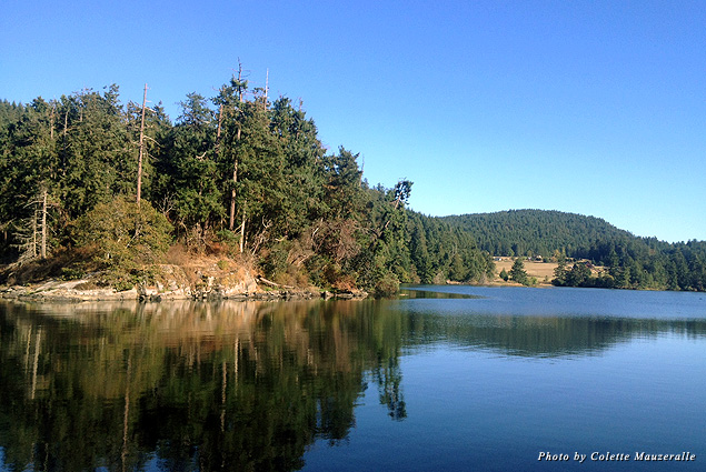 Maple Bay, on the eastern shore of Vancouver Island, provides quintessential Canadian views