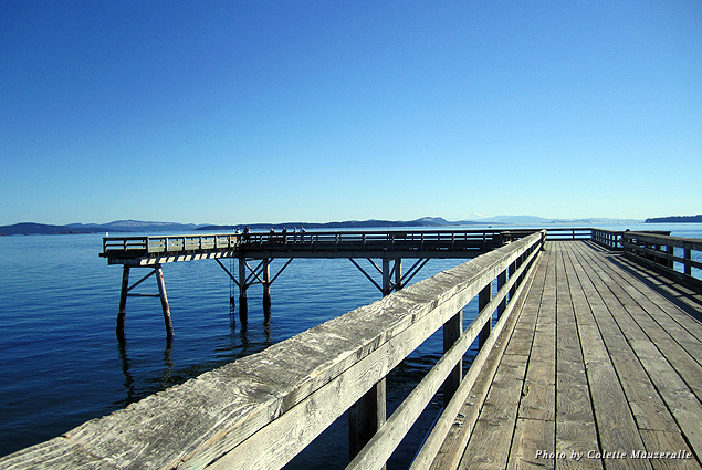 A quiet day under blue skies at the Sidney Fishing Pier
