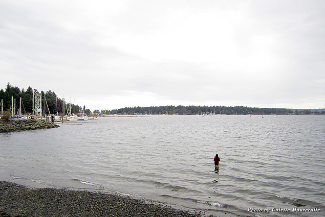 Even on a gray day, locals wade waist high into Nanaimo's McKay Channel to go fishing